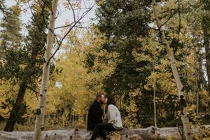 couple-kissing-on-log-quenella-pass-colorado-raelyn-ramey-photography