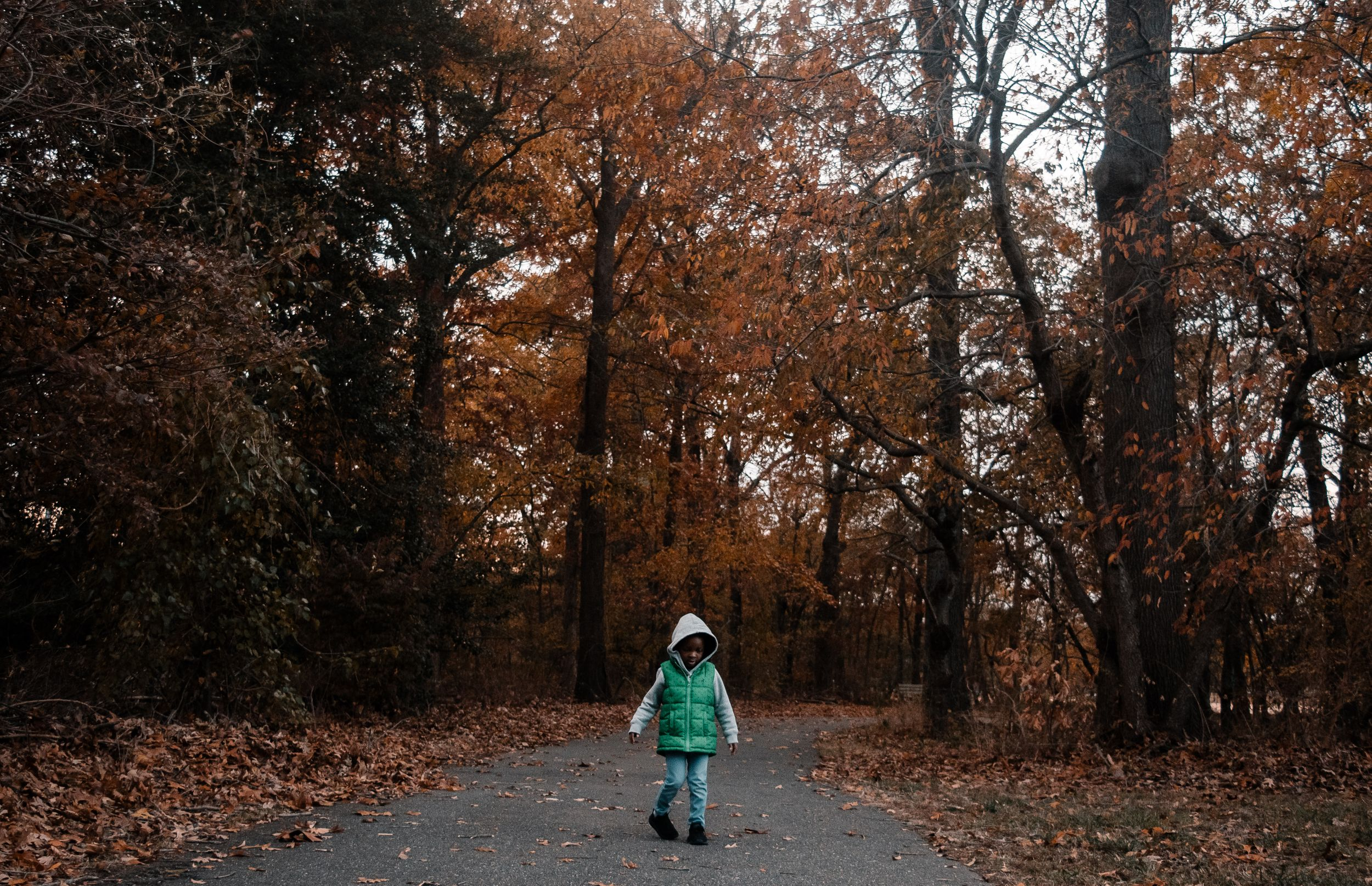 child-standing-on-a-path-in-the-woods-in-the-fall