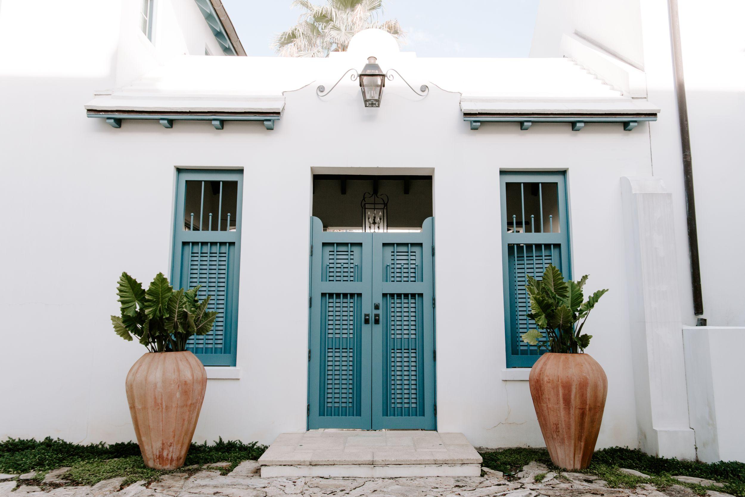 blue door on a white building with two plants