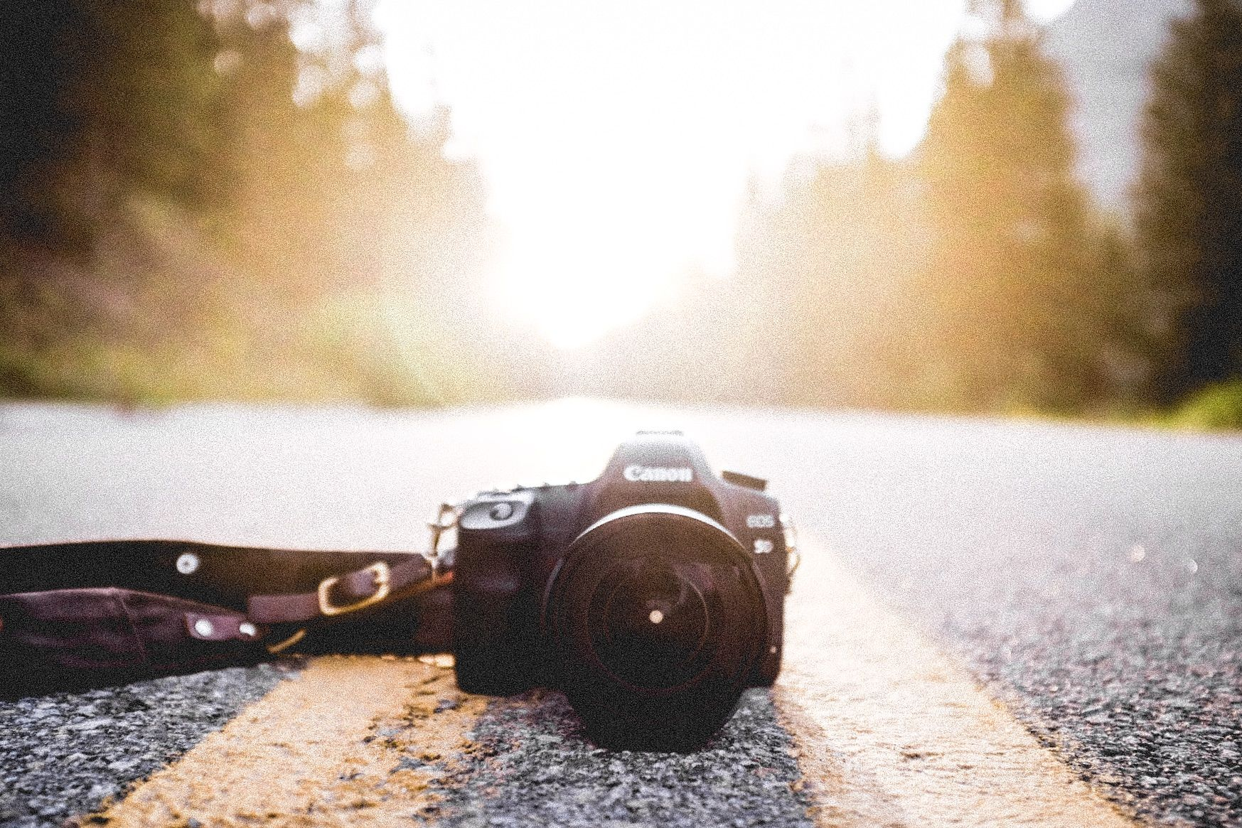 picture of dslr in the middle of road at yellowstone national park, wyoming