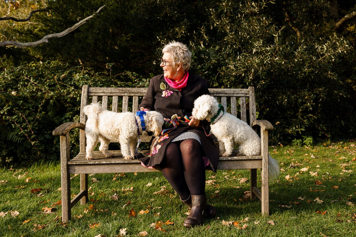 Woman sits on a bench in the sun with her two dogs wearing bow ties at a wedding. Top 10 dog-friendly wedding tips.