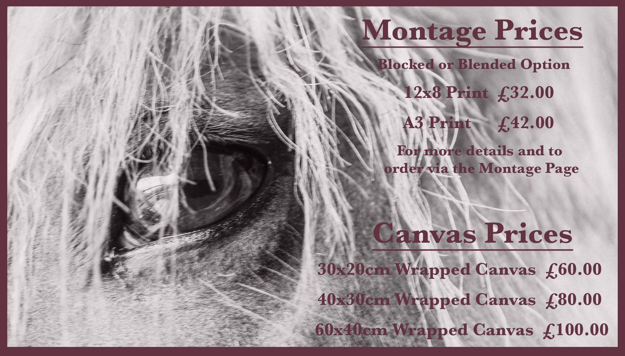 EquinePix Montage Prices List