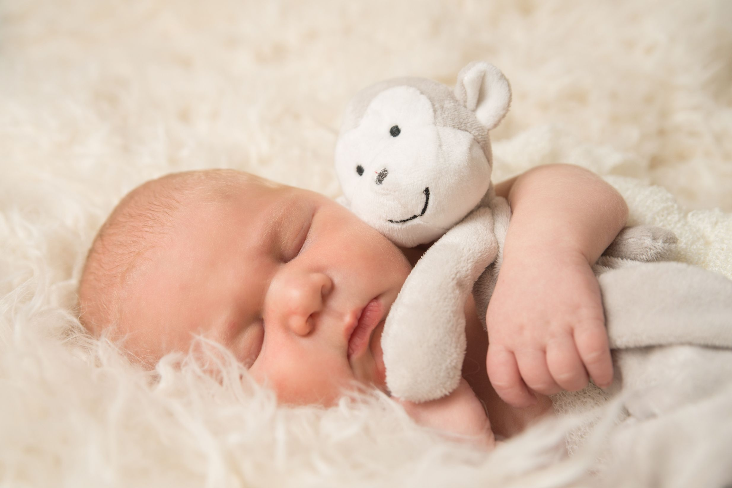 newborn baby sleeping cuddling a monkey soft toy