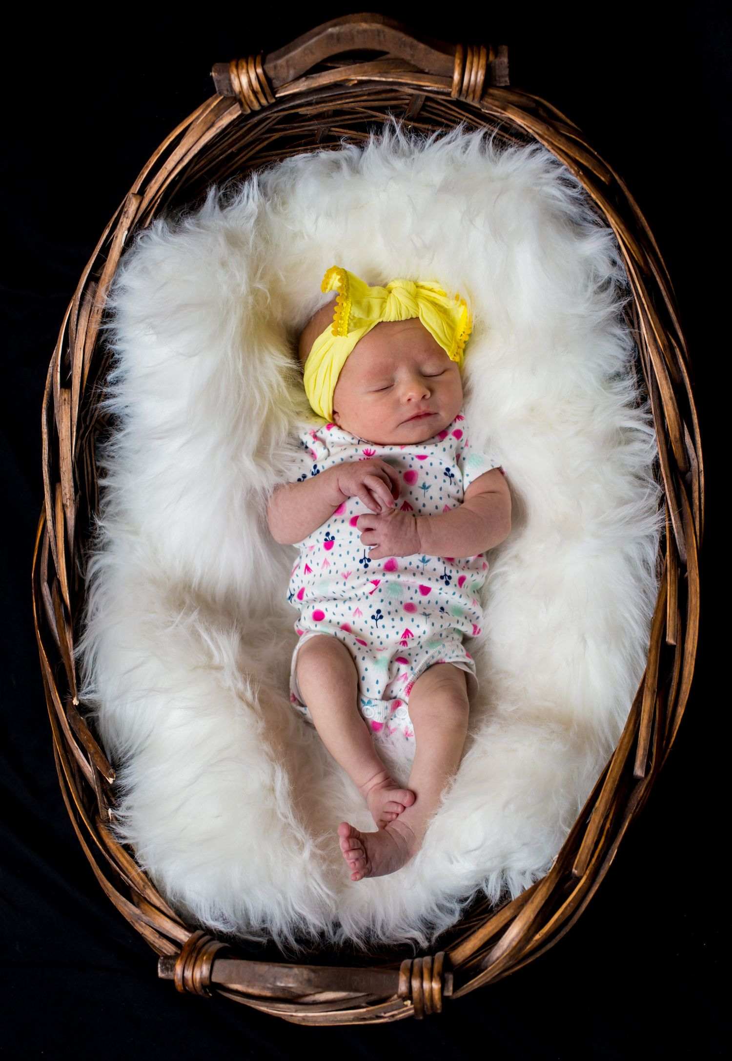 Newborn portrait of a baby in a basket photo by Columbia, SC, wedding photographer Jeff Blake
