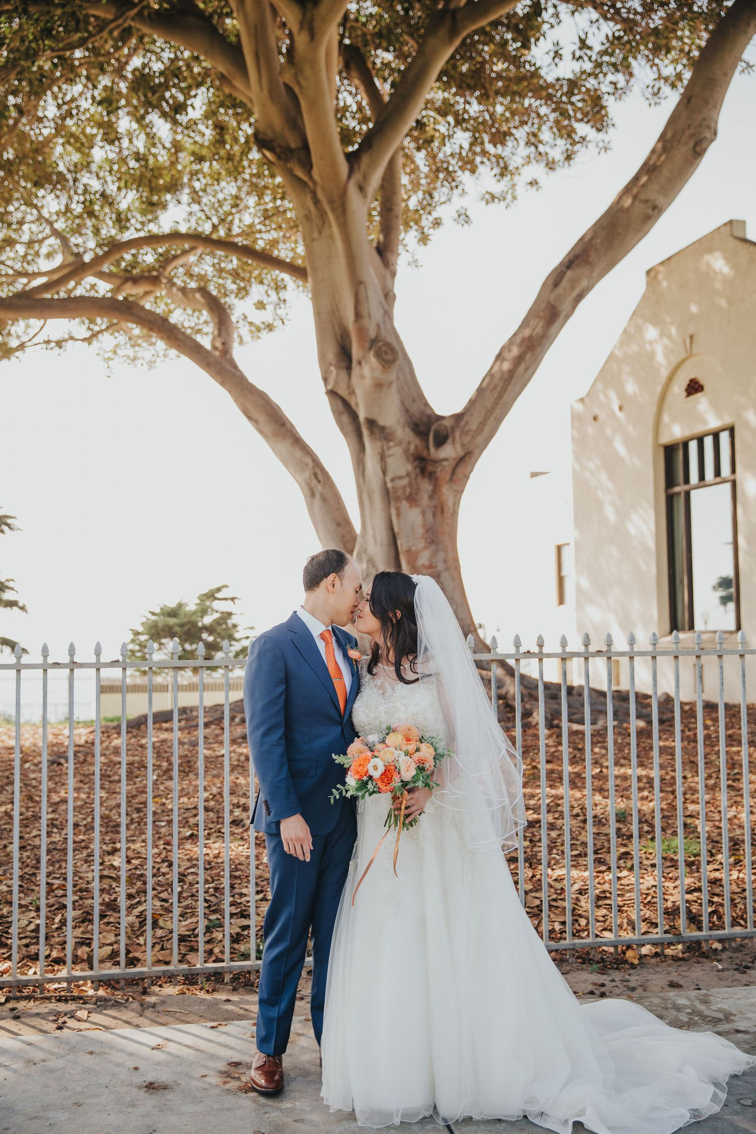 bride & groom kissing in front of oak tree redondo beach historic library