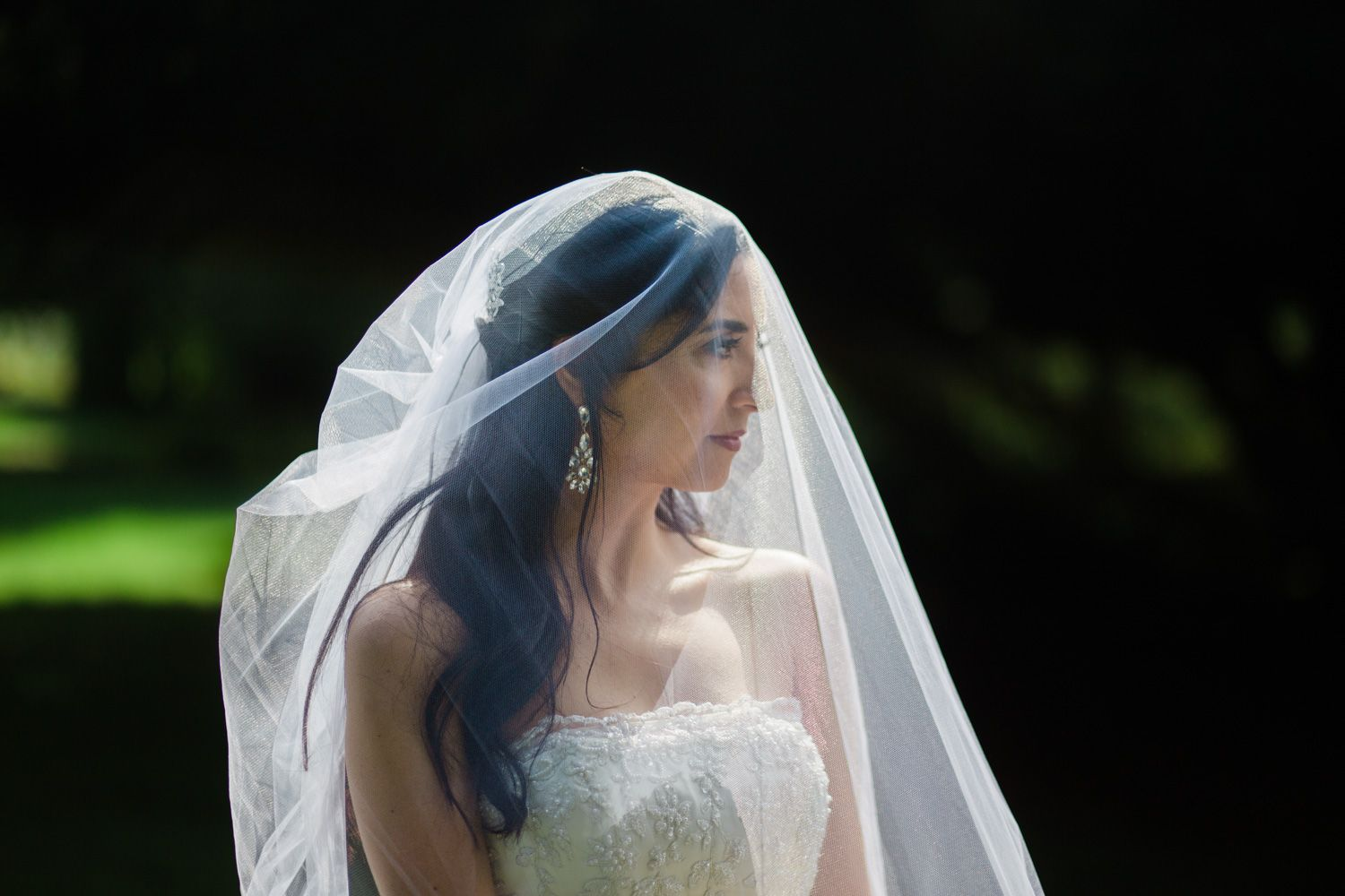 Portrait of bride wearing a veil