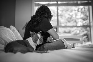 Whistler Newborn Photographer Baby Photography Dog