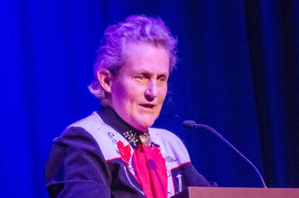 Close-up picture of autism celebrity Temple Grandin speaking on stage.