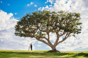 elvis yu photography california engagement wedding day destination wedding malibu los angeles